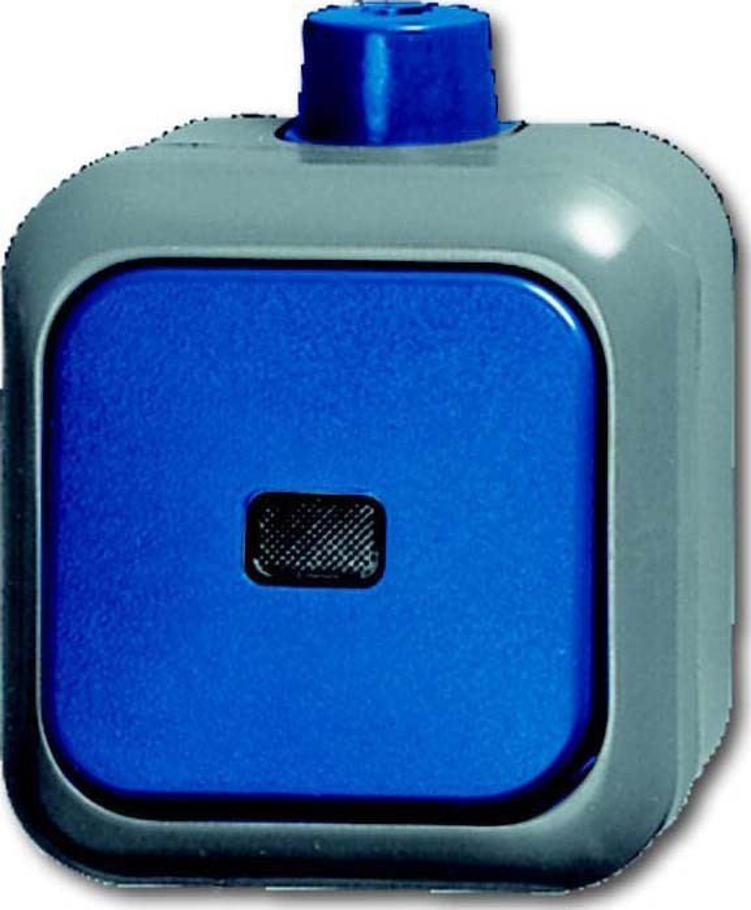 busch jaeger kontrollwechselschalter 2601 6 skwdi elektroartikel online shop. Black Bedroom Furniture Sets. Home Design Ideas