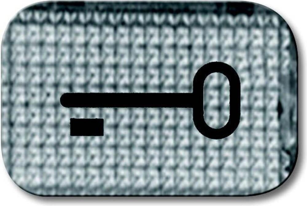 busch jaeger tastersymbol 2145 tr elektroartikel online shop. Black Bedroom Furniture Sets. Home Design Ideas