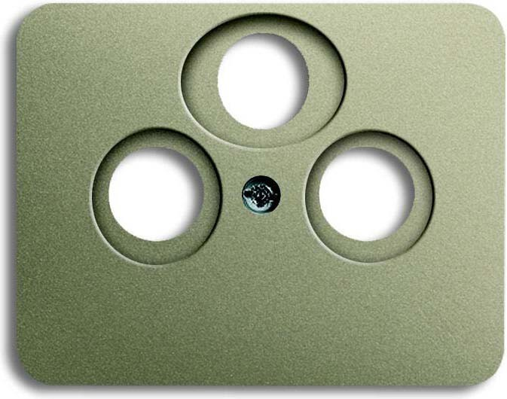 busch jaeger zentralscheibe pall 1743 03 260 elektroartikel online shop. Black Bedroom Furniture Sets. Home Design Ideas