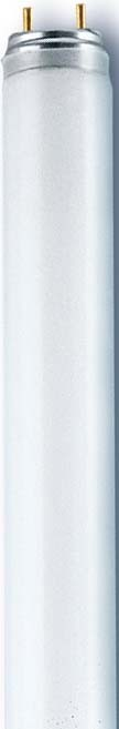 Radium Lampenwerk Leuchtstofflampe NL-T8 58W//865//G13 G13 Leuchtstoffröhre